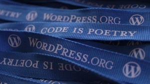 wordpress developer, wp freelancer developer