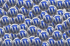 wp freelancer developer, developer wordpress, wordpress developer
